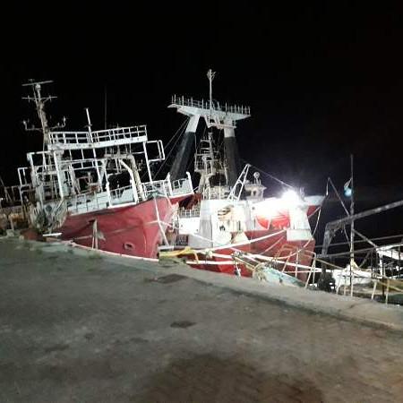 Calamar y la merluza sostienen la actividad en puertos de ZN
