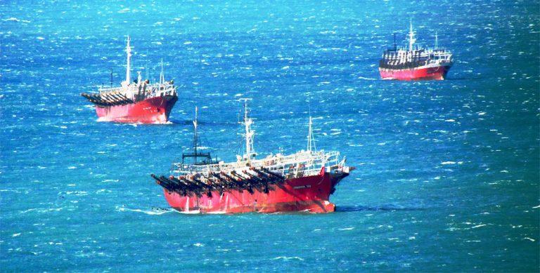 La zafra de calamar transita sus últimos días con un balance favorable